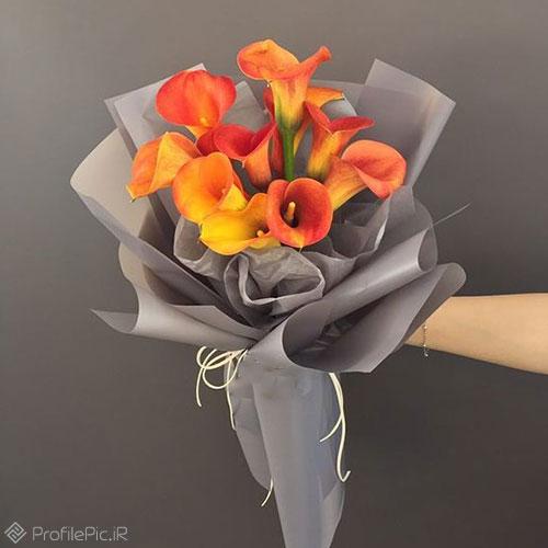 عکس پروفایل دسته گل برای تبریک