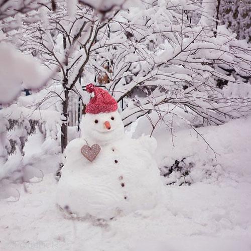 آدم برفی در زمستان