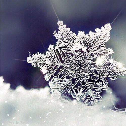 عکس پروفایل زمستان یخ