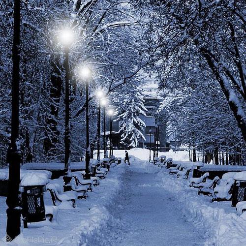 پروفایل برف در شب