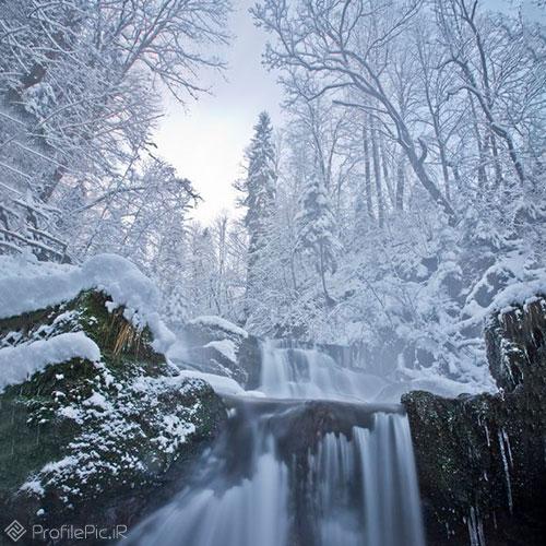 روز برفی در طبیعت زمستان زیبا