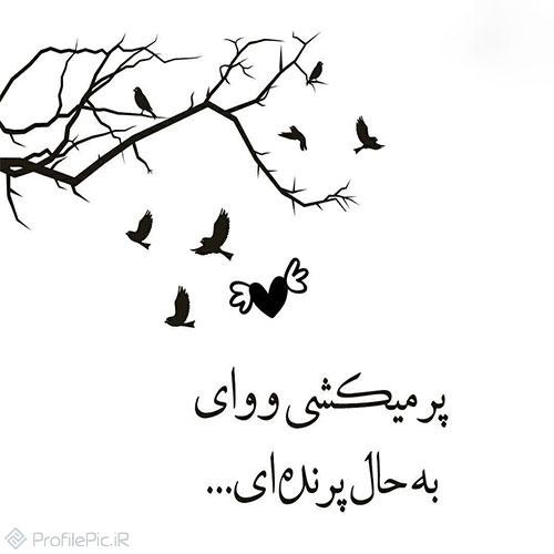 عکس خاص با نوشته زیبا