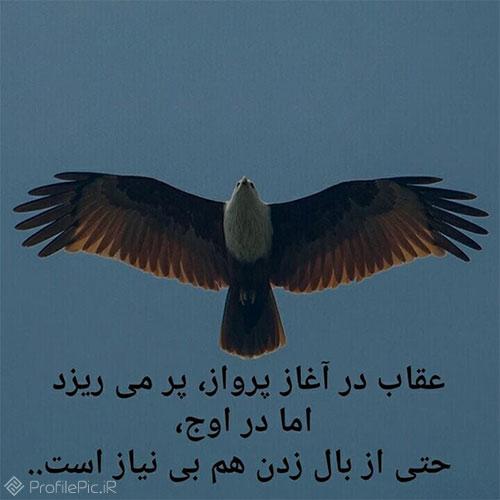 عکس نوشته مفهومی تیکه دار