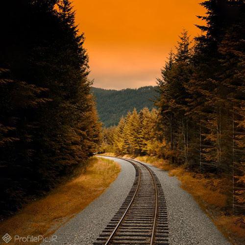 عکس ریل قطار در جنگل
