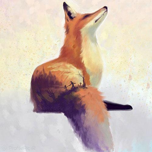 عکس روباه وحشی