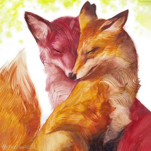 عکس روباه عاشقانه ایرانی