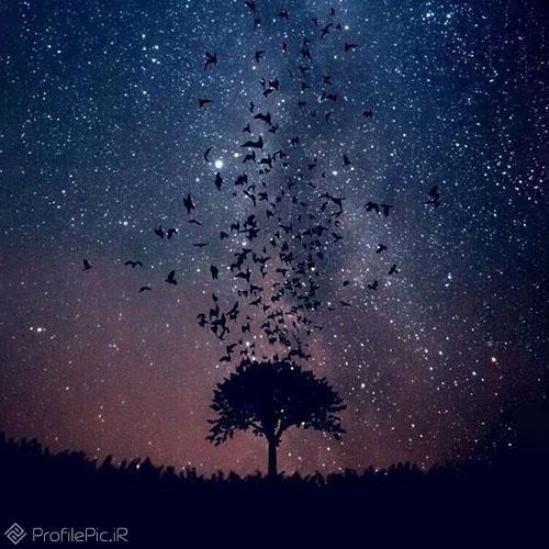 عکس های زیبا از آسمان شب
