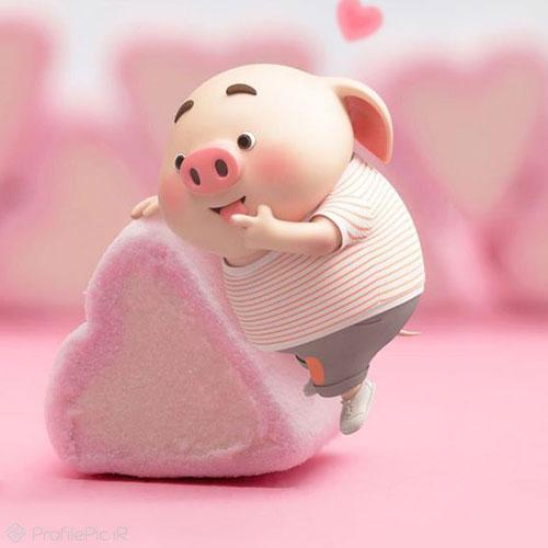 عکس خوک برای پروفایل