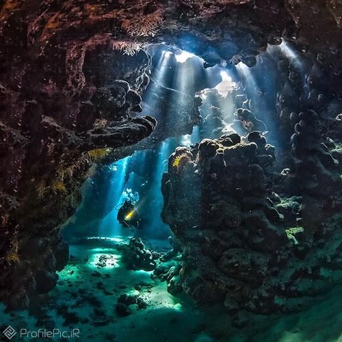 عکس جدید از زیر دریا