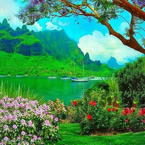 عکس منظره زیبای بهاری برای پروفایل