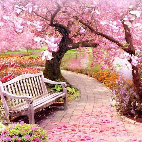 عکس پروفایل زیبا از طبیعت بهاری