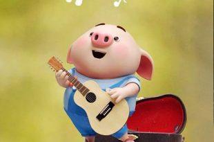 دانلود عکس پروفایل خوک